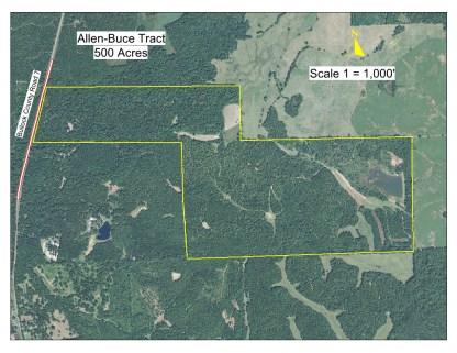 How big is 500 acres?