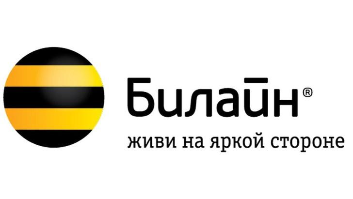 Основная информация о компании Билайн «Вымпелком»