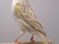 agaatpastel-geel-mozaiek-type-1