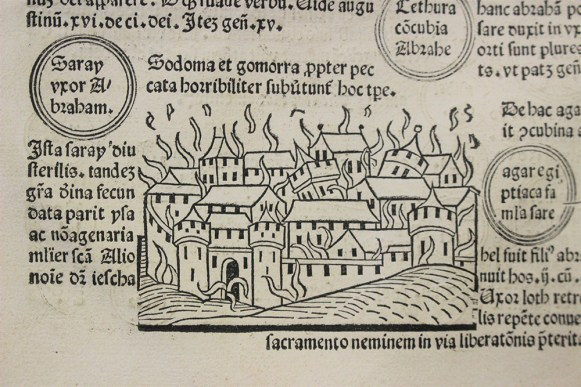 Detail of a page in 'Fasciculus tempor[um]', featuring an illustration of a city in flames