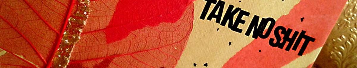 Take no shit – kloka ord på handgjord tavla från specialday.se