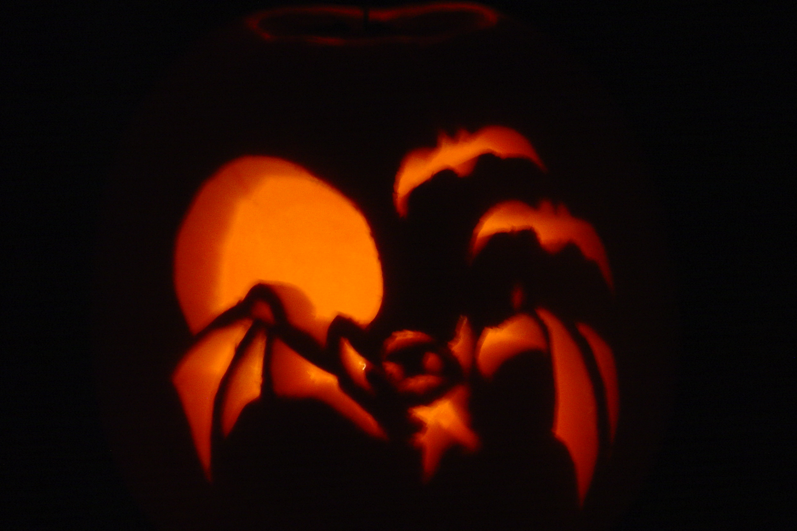 Travis and my pumpkin (we used a stencil)
