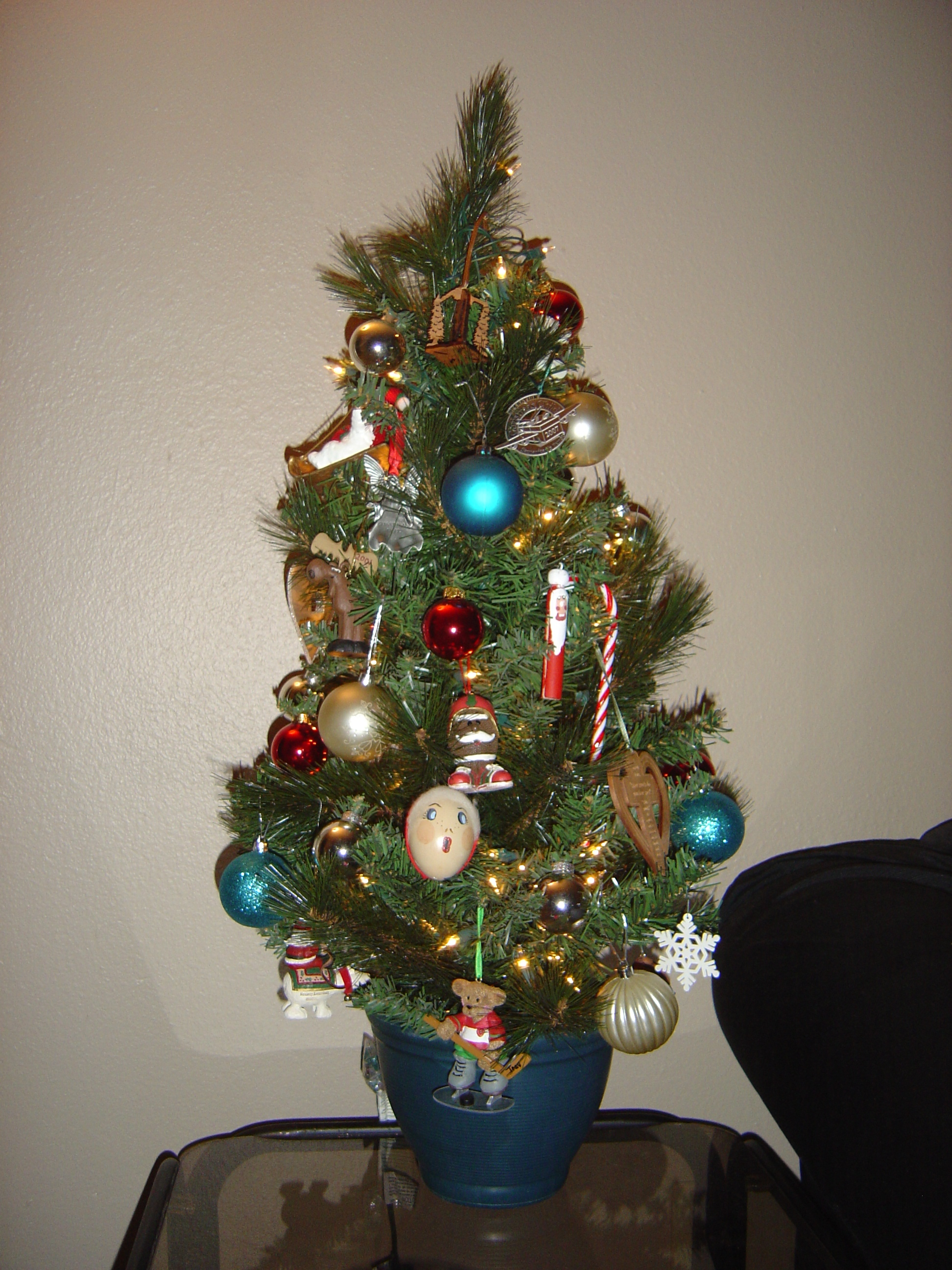 Our little Christmas tree that we bought last year when we lived in an apartment.