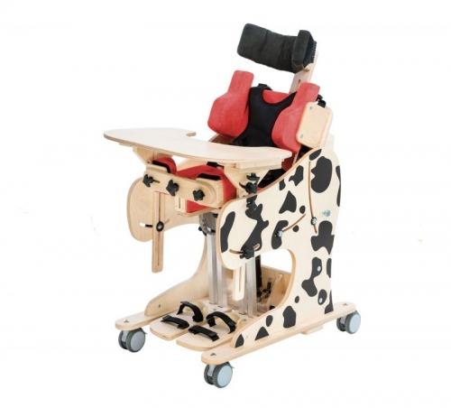 potty chairs for special needs oxo high chair oxygen therapy, toys equipment and pediatric wheelchairs | specialneedsequipment.eu