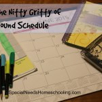 Filling in the Nitty Gritty of the Year Round Schedule