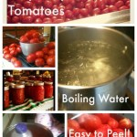 Canning Gluten Free Pizza Sauce