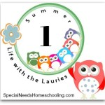 Year Round Homeschooling Summer Edition
