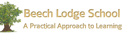 Beech Lodge: A new school offering a practical approach to learning