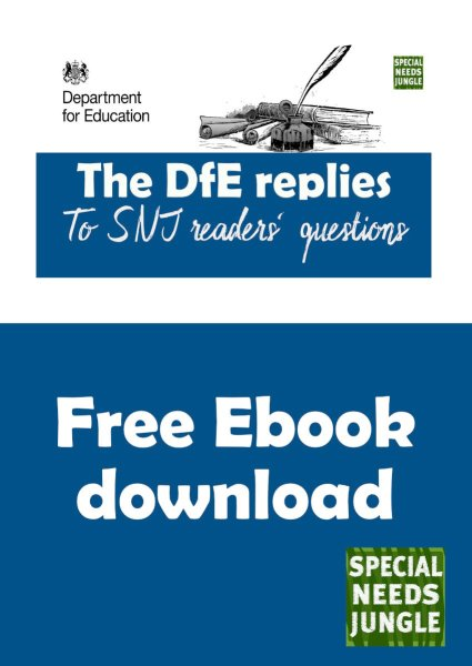 cover for DfE replies ebook