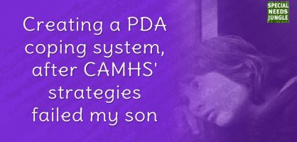 Creating a PDA coping system, after CAMHS' strategies failed my son