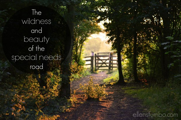 wildness and beauty