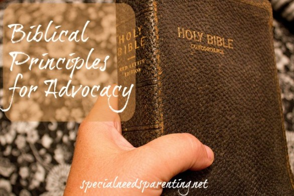 Biblical Principles for Advocacy from the Gospel of Luke and Book of Acts {specialneedsparenting.net}