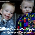 The Call: A Grandmother's Reflections on Getting a Diagnosis (specialneedsparenting.net)