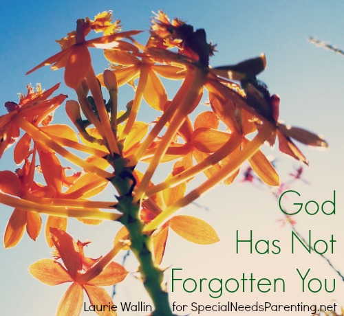 God has not forgotten you Laurie Wallin