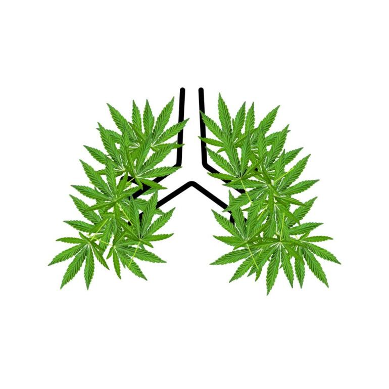 Cannabis derived CBD may help fight off severe lung inflammation caused by COVID-19