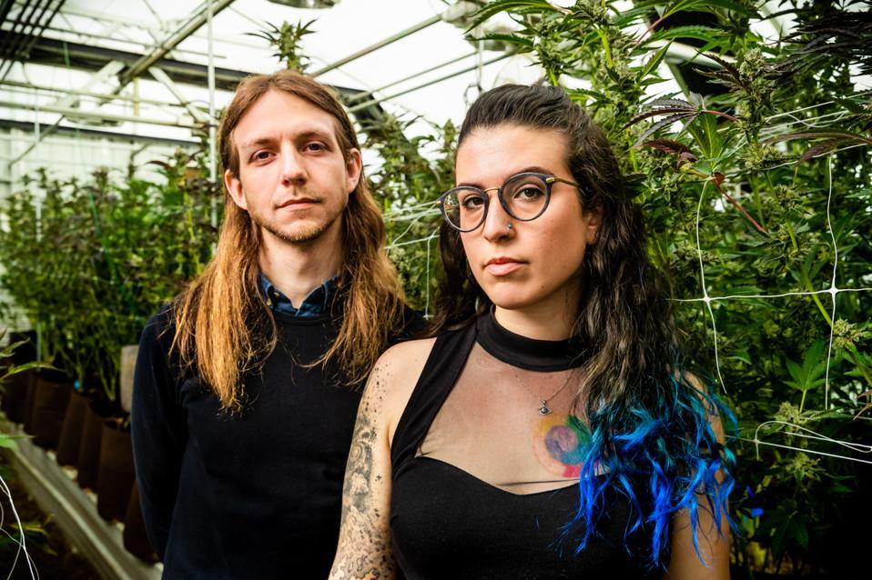 Emma and Matt with Cannabis Plants