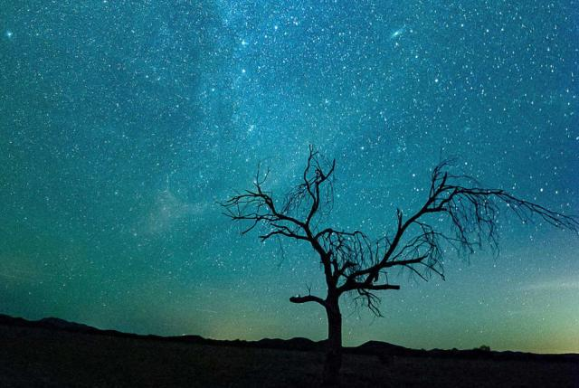 A starry sky above one of the many U.S. National Parks
