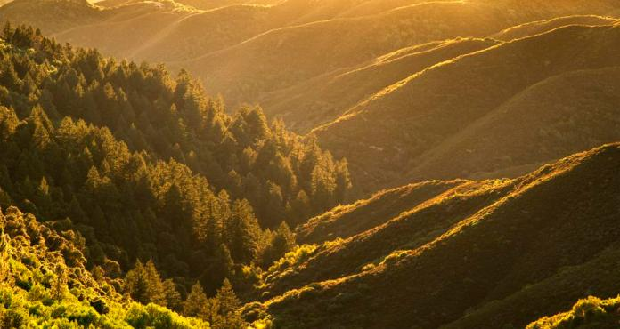 Golden light in valley