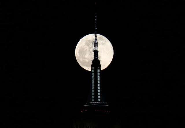 Full moon wolves rise in New York City