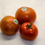 Planet Earth Diversified Famous Tomatoes