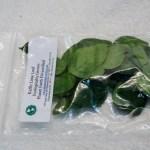 Kaffir Lime Leaf Bag