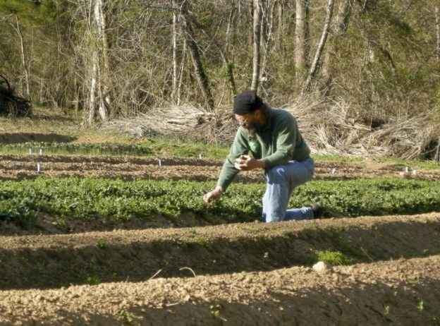 Planting Field Crops