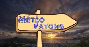 La Météo à Patong (Prévision et tendance à l'année)