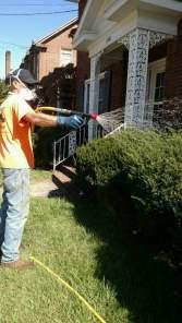 Spraying (1)