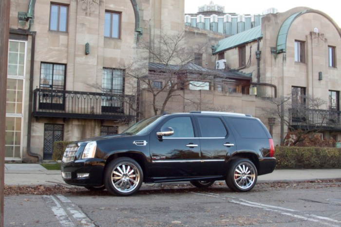 Escalade Gallery Pic 11