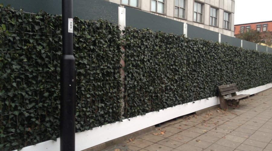 LIVING HOARDINGS HELP IMPROVE LONDON BOROUGH HIT BY 2011 RIOTS