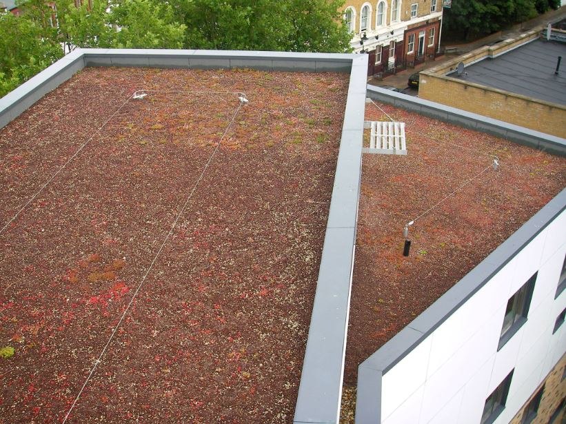 Safety on Green Roofs