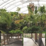 Kemper System provides solution for Chester Zoo's Monsoon Forest