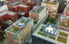 Should the UK follow the German example in developing green roofs?