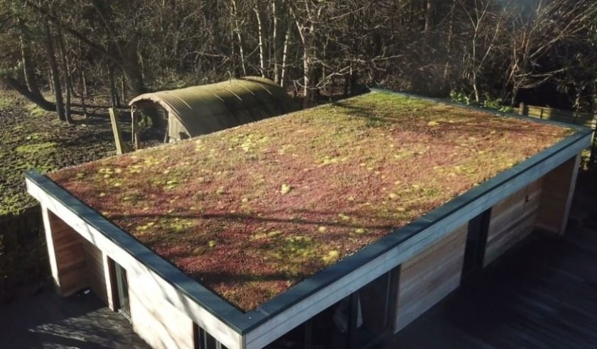 What are the opportunities for retrofitting Green Roofs in the UK? 1