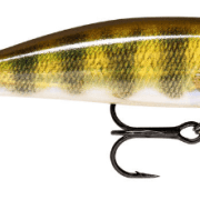 Rapala X-Rap CountDown 5cm Live Perch