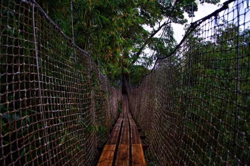 Botanical Garden Martinique