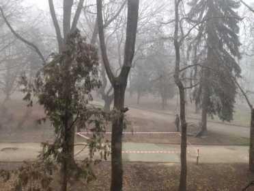 Тумани і туманне латання тротуарів по-рівненськи