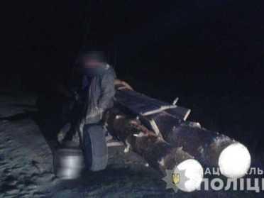 Поліція викрила на Рівненщині крадіїв лісу