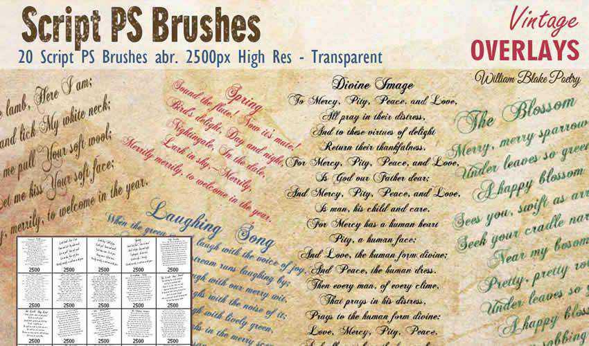 Script vintage antique adobe photoshop ps brush brushes abr pack set free