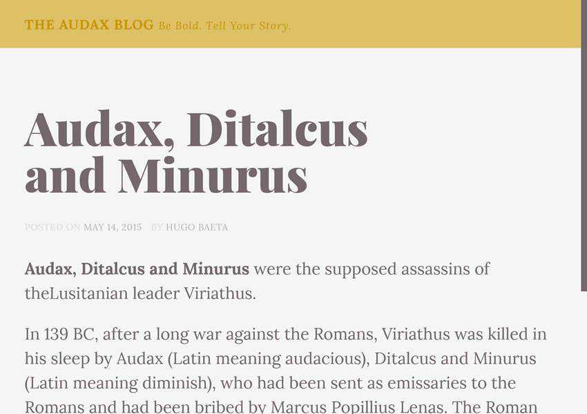 Audax free wordpress theme wp responsive template blog writer longform article