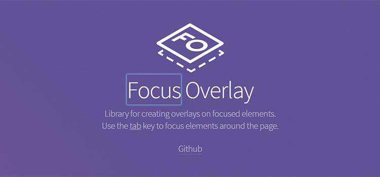 Focus Overlay
