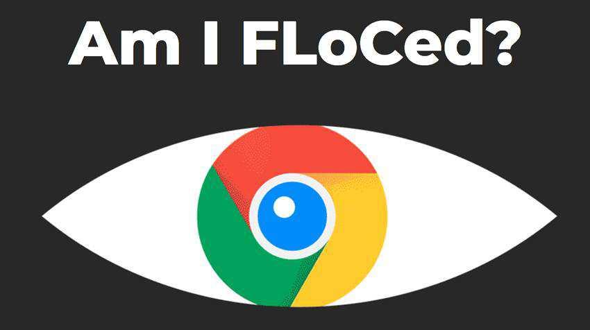 Am I FLoCed