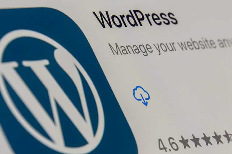 Example from Scenarios Where WordPress May Not Be the Best Option