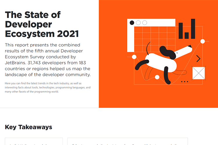 Example from The State of Developer Ecosystem 2021
