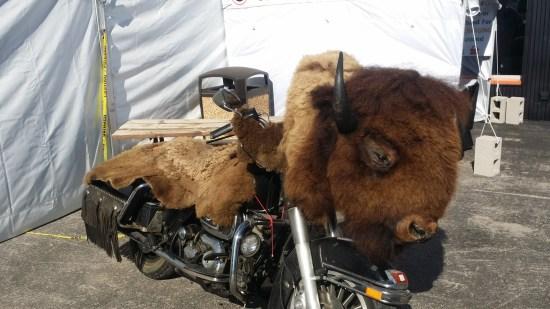 Sturgis - bison bike