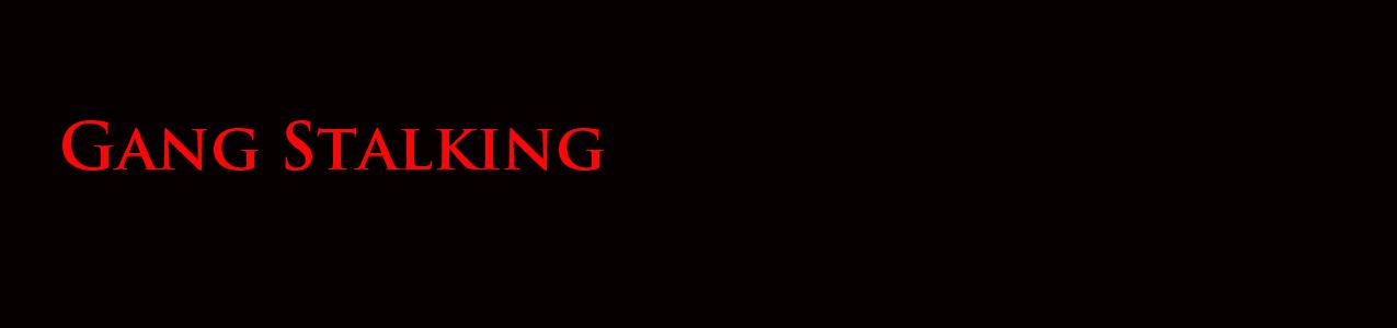 gang stalking