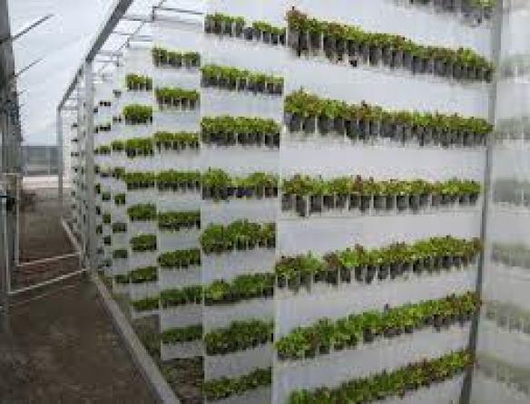 wall farm
