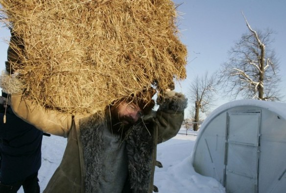 Russian businessman German Sterligov carries hay at his farm in the Istra region near Moscow