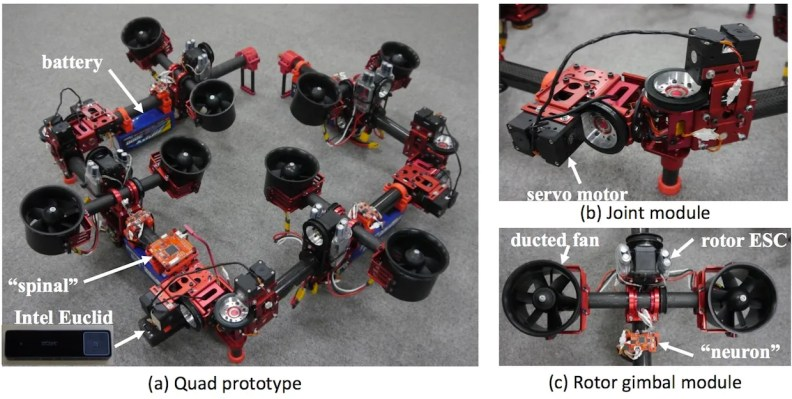 DRAGON drone