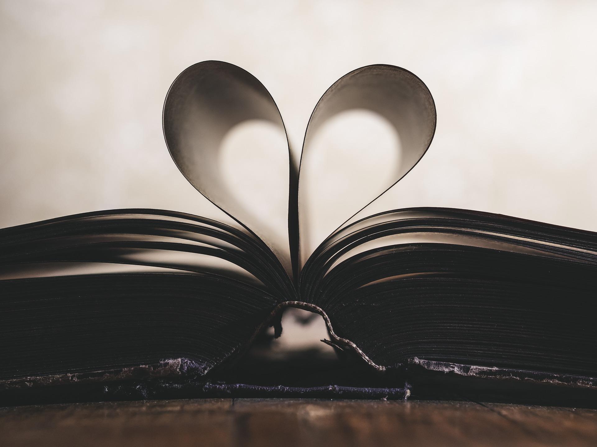 book, heart, portfolio